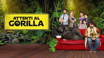 Se filmen Attenti al Gorilla på Netflix