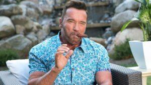 Arnold Schwarzenegger spion serie netflix