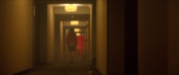 crime scene hotel cecil netflix